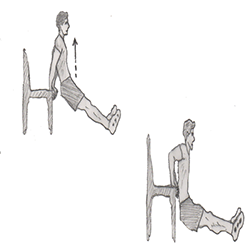 Triceps-Triceps dip on chair