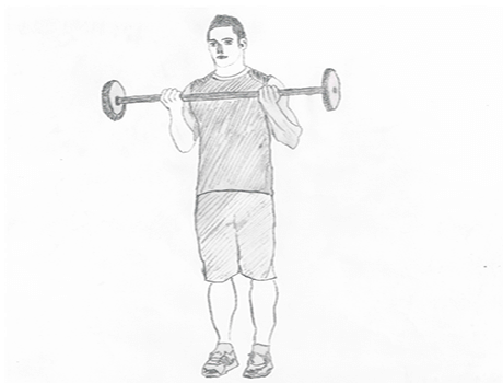 Step 2 for exercise Wide grip standing Biceps barbell curl