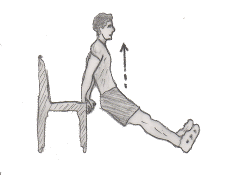 Triceps dip on chair strengthen your triceps muscles along with Chest, Shoulders muscles. You need a chair to perform this exercise.