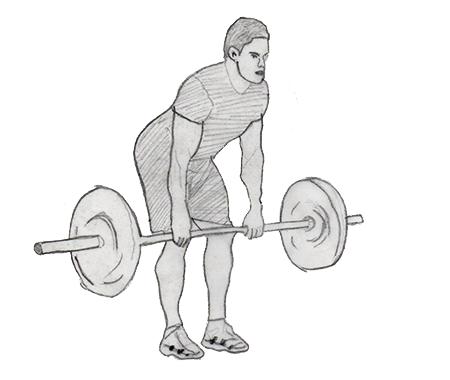Step 2 for exercise Bent over Row