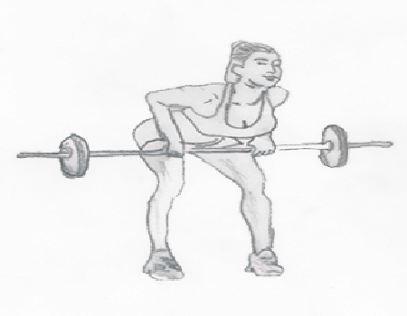 Step 2 for exercise Barbell Biceps Curls