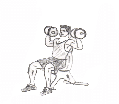 Dumbbell Shoulder Press targets your anterior and middle deltoids(shoulder muscles) and upper trapezius(upper back muscles) and is performed with two variety one by standing and other by sitting on the bench.