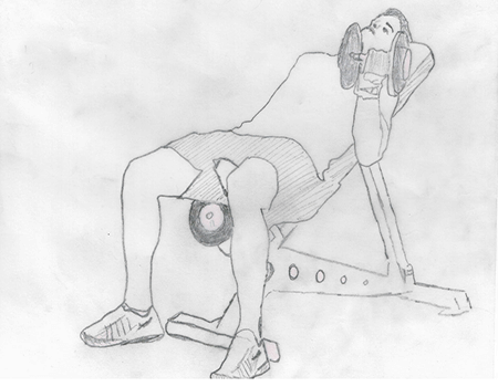 Step 2 for exercise Incline Dumbbell Curls