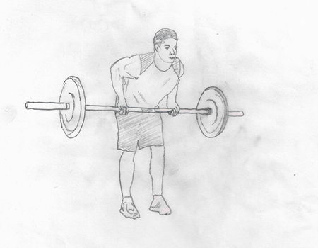 Step 2 for exercise Reverse Grip Rows