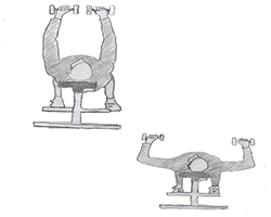Chest-Dumbbell Bench press