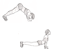 Chest-Judo Pushups