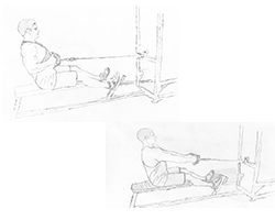Back-Seated Cable Rows